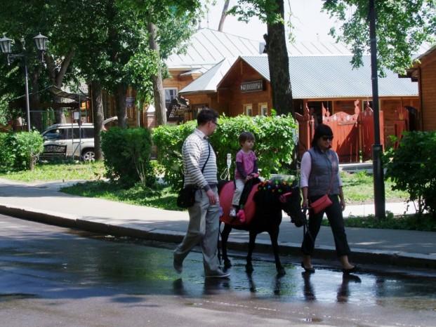 Moyen de transport pour la visite de Souzdal.