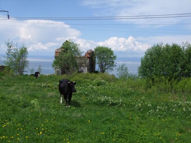 Dans le village de Dima.