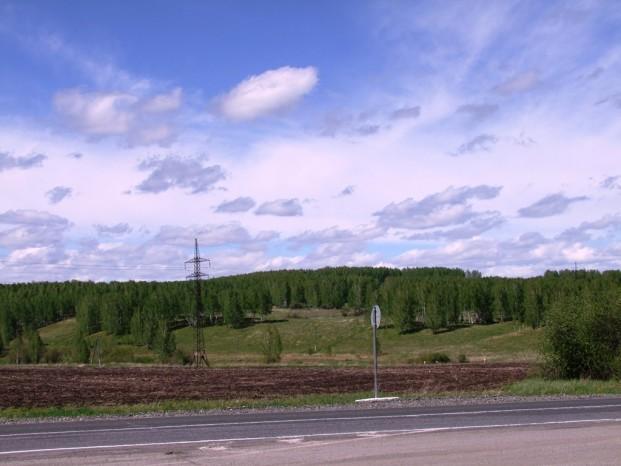 Le paysage de la taïga siberienne.