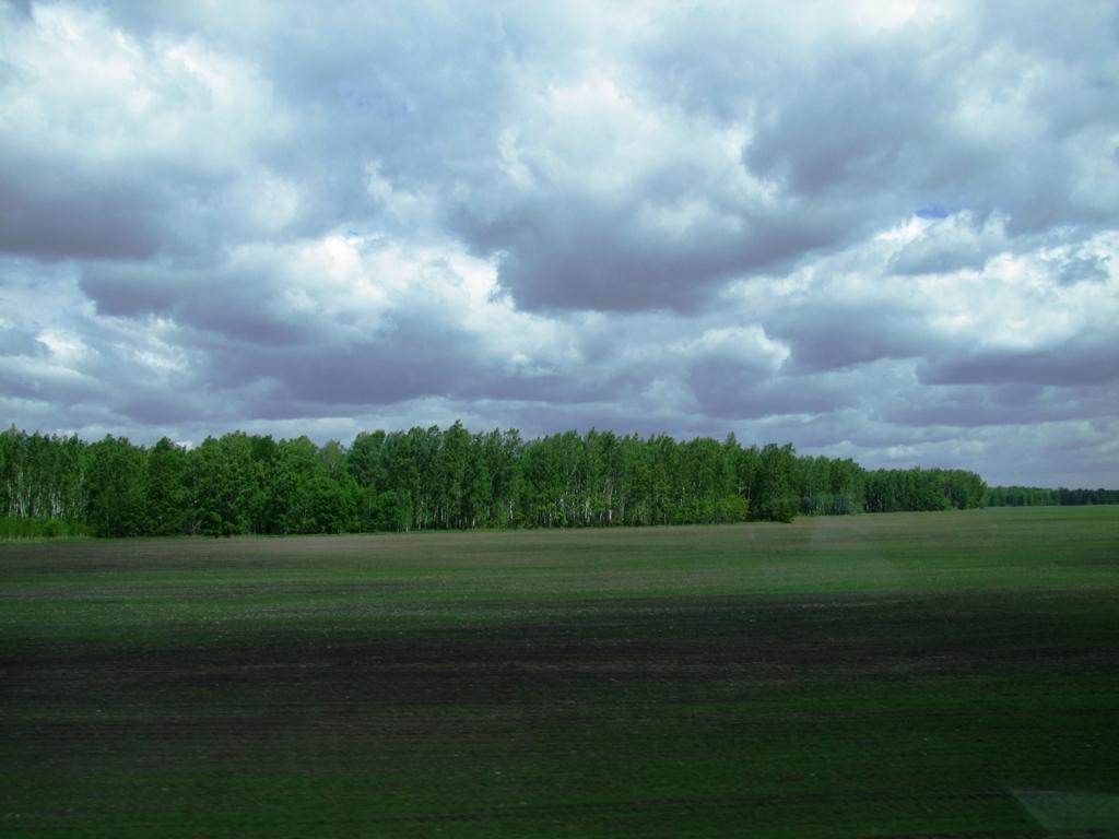 Les grandes plaines de la Sibérie.