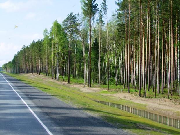 Sur la route de Novossibirsk à Tomsk.
