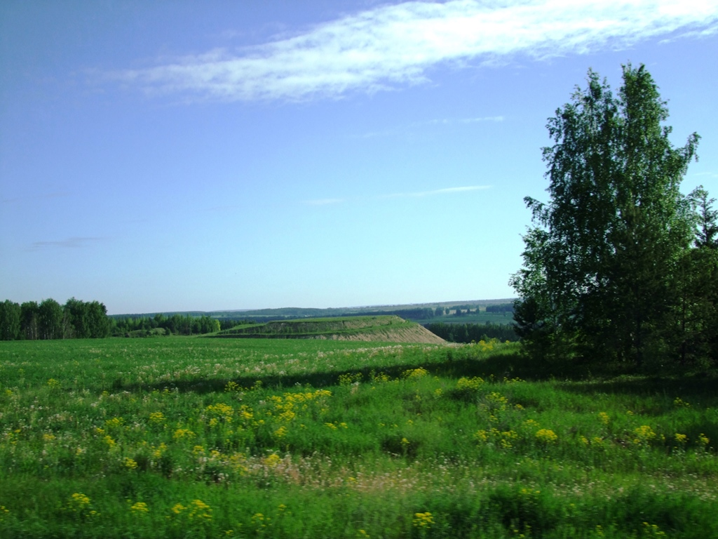 Vers Ekaterinbourg, paysage d'Oural.