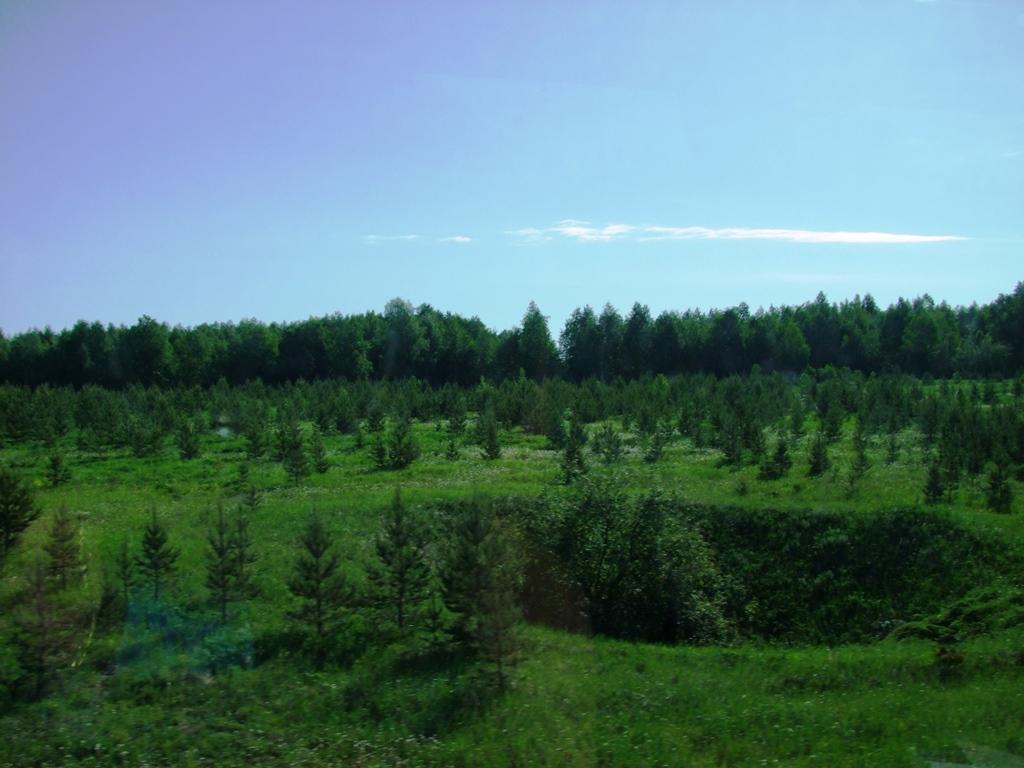 Vers Ekaterinbourg.